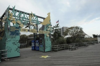 New York Aquarium: New York Attractions Review - 10Best ...