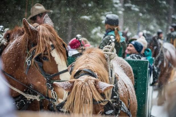 Enjoy a magical Montana getaway at Lone Mountain Ranch