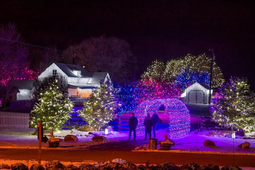 Trail Of Lights Chatfield Farms Denver Attractions Review
