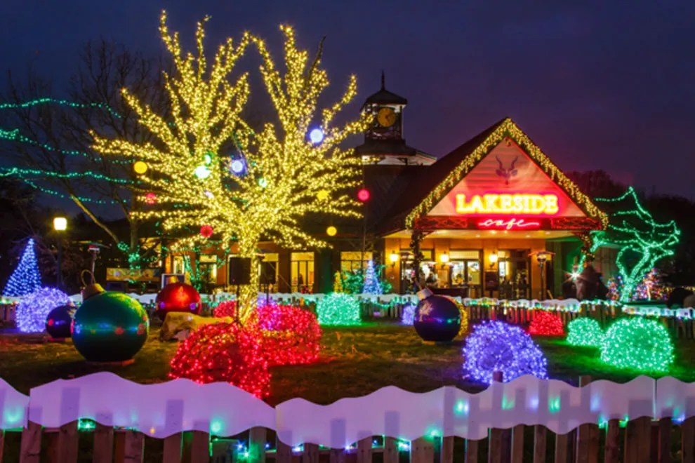 Zoo Lights Detroit Zoo 2017