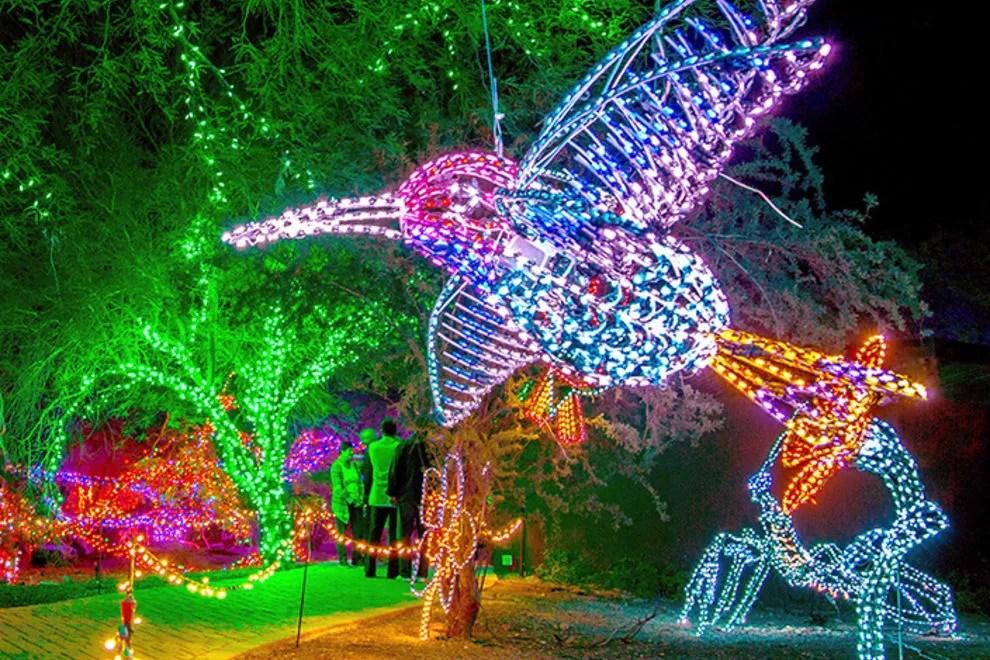 Riverbanks Zoo Christmas Lights 2017