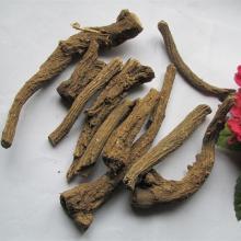 Saussurea Involucrata products.China Saussurea Involucrata supplier