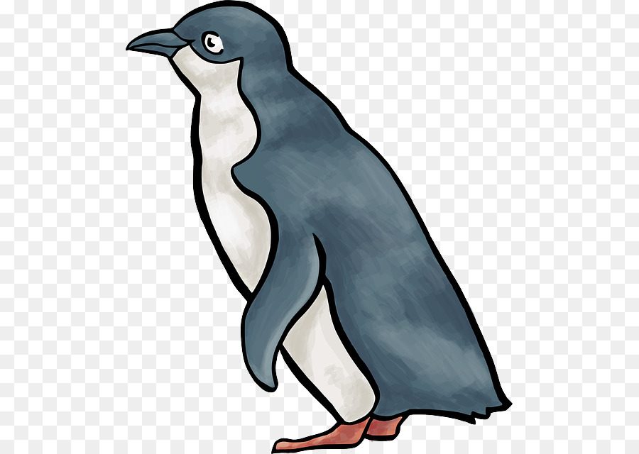 البطريق حيوان صغير حيوان البطريق حيوان صغير الحيوان الكرتون Png