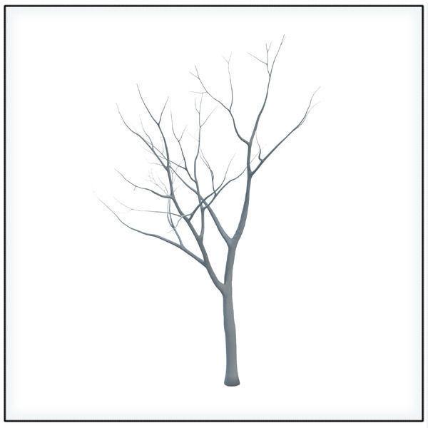 Common Tree STL Printable 3D Model 3D printable OBJ STL