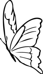 Butterfly Outline print art Outlines print art at EmbroideryDesigns com
