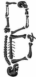 Skeleton Font by Embroidery Patterns Home Format Fonts on