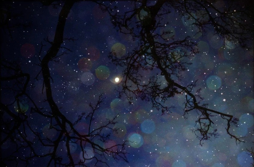 In the fields of stars - magical dreamy  night sky photograph in navy blue