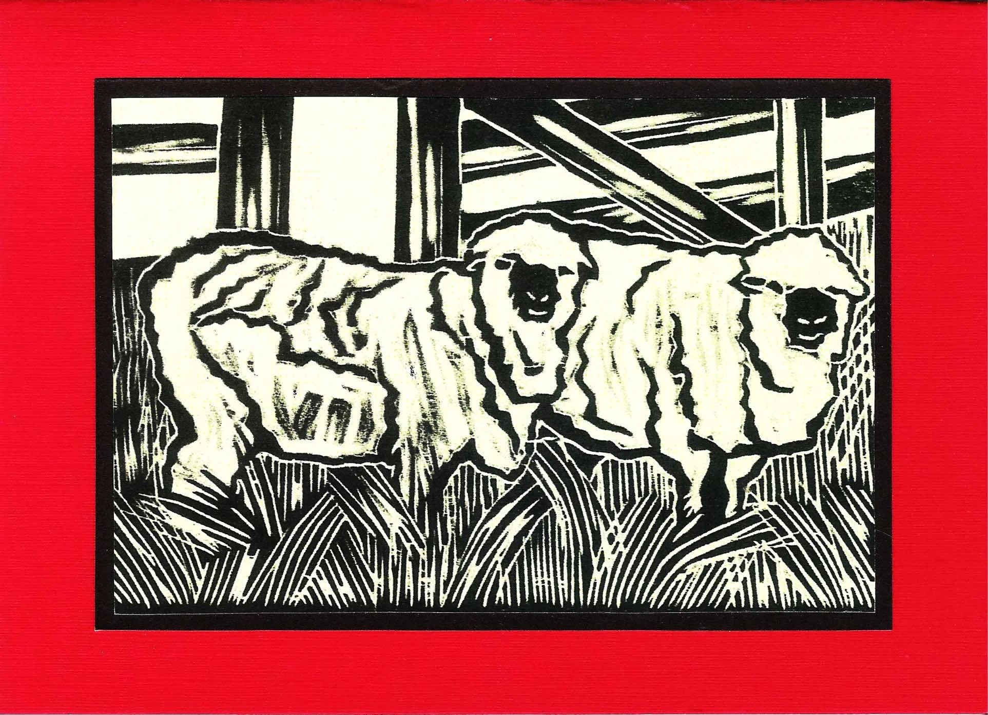 5 Red  Sheep Notecards