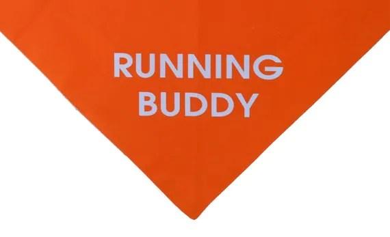 Running Buddy orange dog bandana - Give110