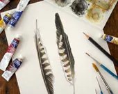 Two Kestrel Feathers - Original Watercolor - Donation to Raptor Centre - jodyvanB