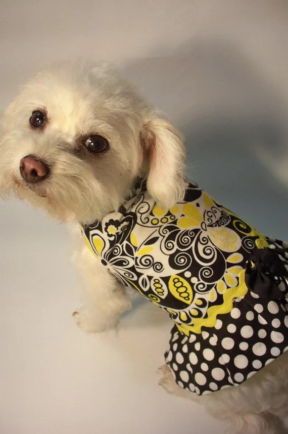 RockinDogs Black, White and Yellow Mod Floral and Polka Dot Reversible Dog Dress