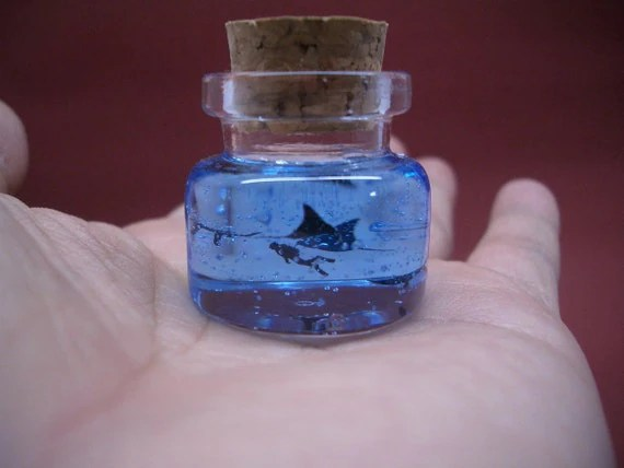 Mantas and a diver are in a tiny bottle