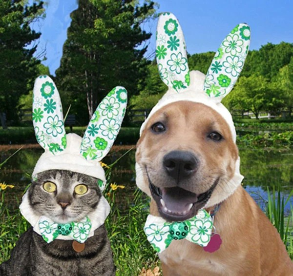 The Hopper Bunny Hat for dogs and cats
