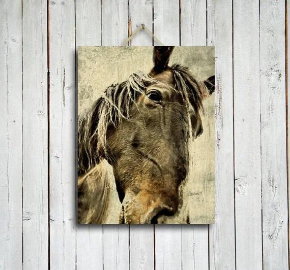 Xerxes - Horse decor - Brown horse - Horse photo - Horse photography - native american style - western decor - brown decor