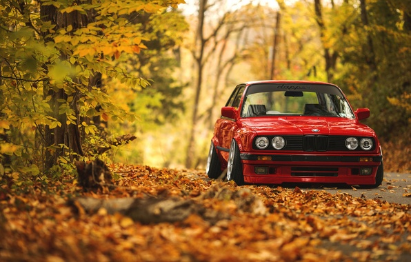 Bmw E30 Iphone Wallpaper Wallpaper Road Autumn Forest Leaves Bmw E30 Images