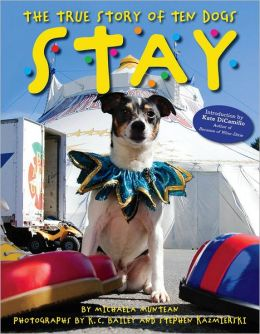 The True Story of Ten Dogs: Stay