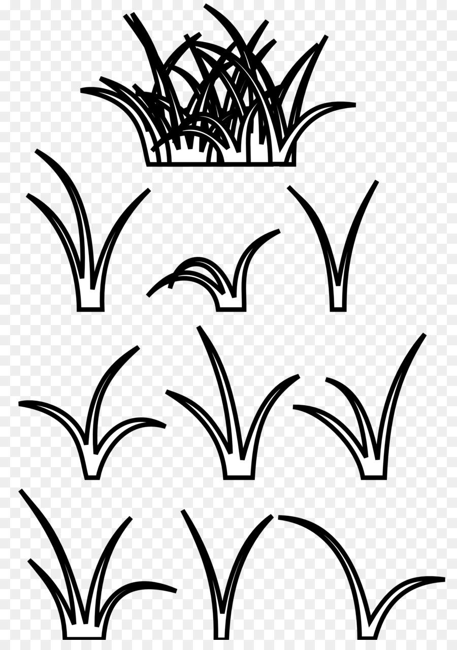 Mewarnai Gambar Rumput : mewarnai, gambar, rumput, Gambar, Hitam, Putih, Rumput