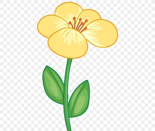 Bunga Desain Bunga Kartun Gambar Png
