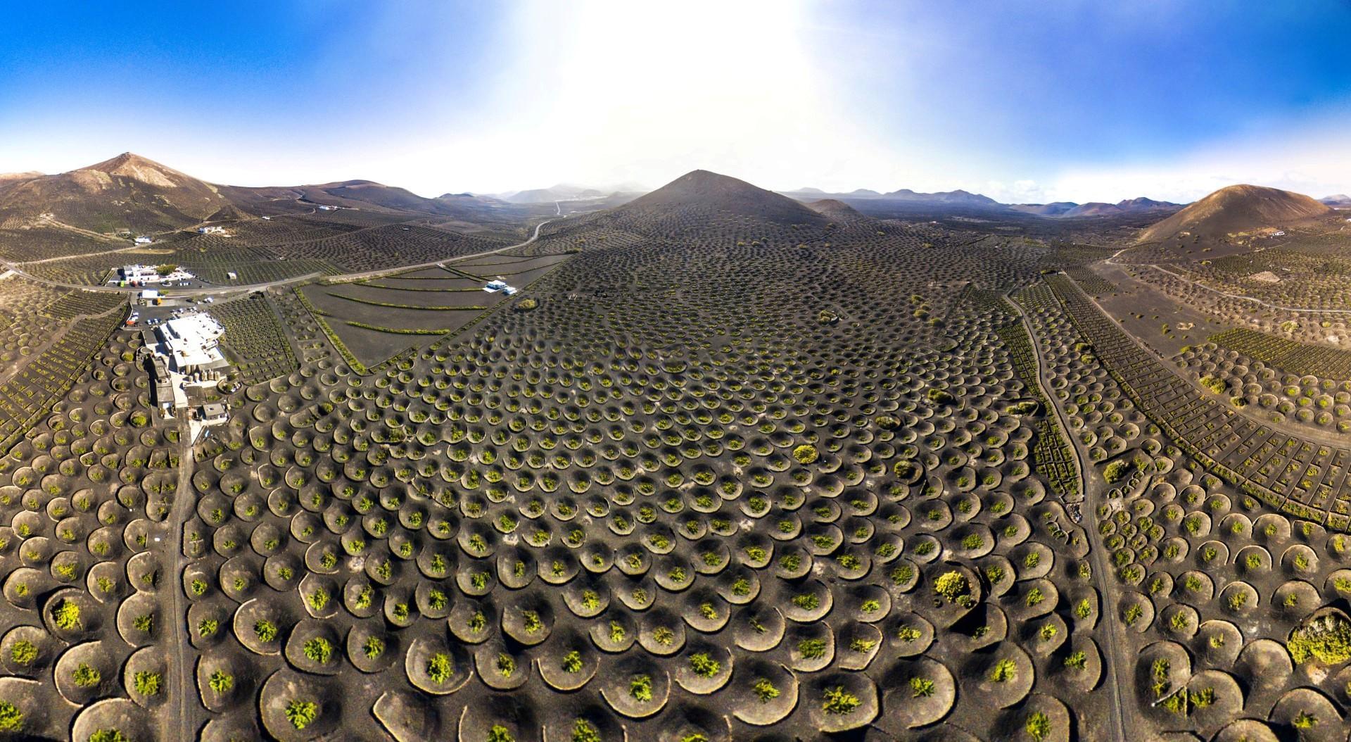 Bellezze della natura paesaggi di vini  Tgcom24