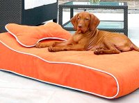 Cutest Beds for Dogs - CURVES DOG BED : People.com