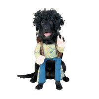LOL! Halloween's Funniest Dog Costumes From Indiana Bones ...