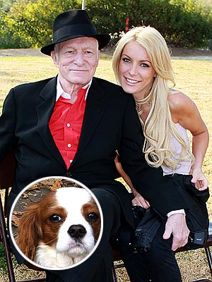 Hugh Hefner & Crystal Harris in a Custody Battle over Their Puppy | Crystal Harris, Hugh Hefner