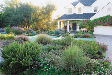 front yard design ideas grass