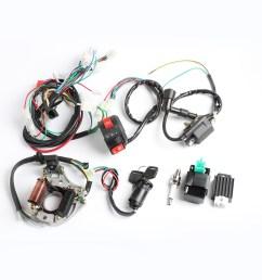 50cc 70cc 90cc 110cc cdi wire harness  [ 1200 x 1200 Pixel ]