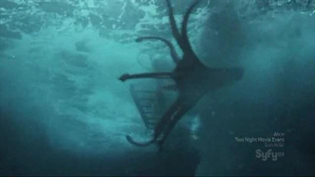 Vampire squid  The Sanctuary Network Sanctuary For All
