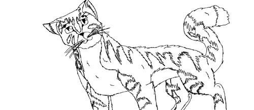 Bild - Ausmalbild Katze (selbstgemacht).png