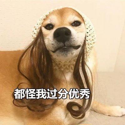 單身狗_微信頭像_我要個性網