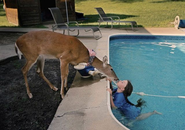 fotosderobinschwartz - La fotógrafa Robin Schwartz muestra la conexión de su hija con animales de todo tipo