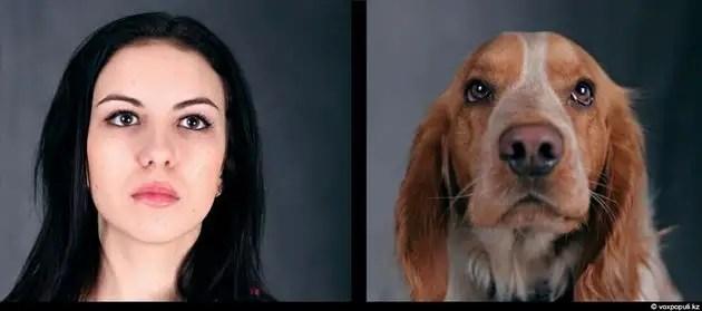 dgpl00522 - Tu mascota se parece a ti, ya sea un perro o un gato