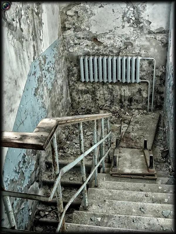 chernobyl37 - Chernobyl 25 años después