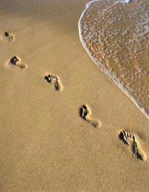 Trace De Pas Dans Le Sable : trace, sable, Empreintes, Père, Encyclopédie, Atypique, Incomplète