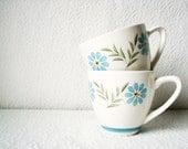 Treasury Pair of Teacups by Colorstone - WesleyAsher