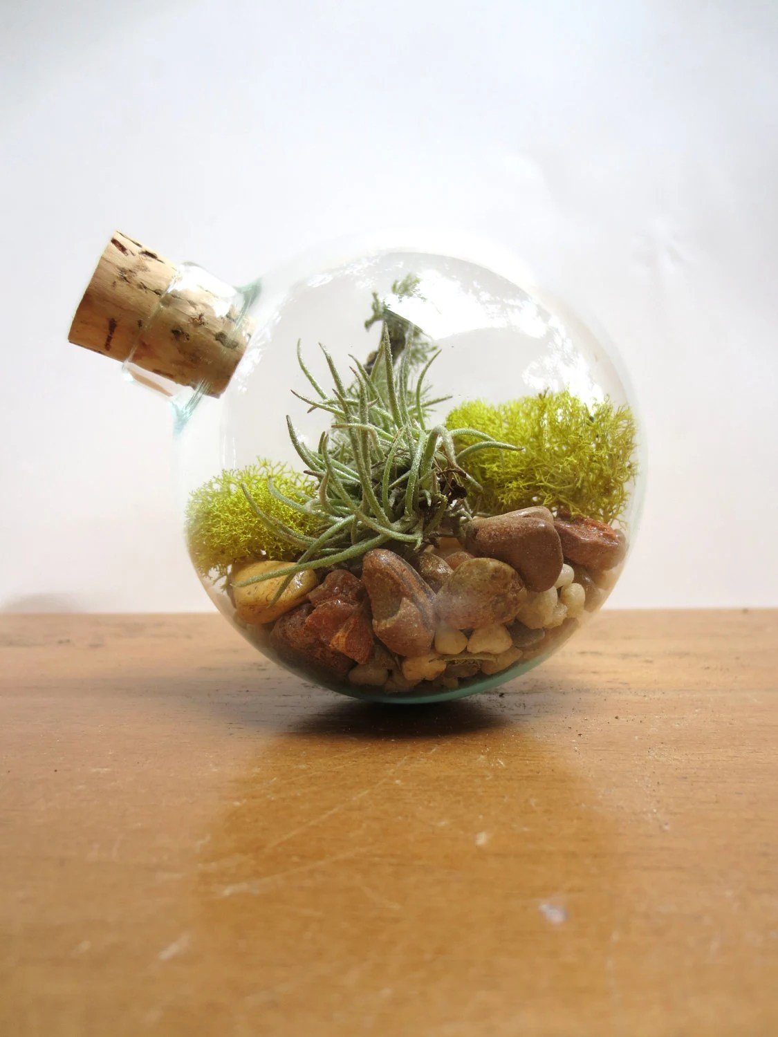 In Perfect Balance Terrarium...Miniature Desktop Garden, Unique Glass Orb Moss and Lichen Terrarium Miniature Terrarium Decor - FaerieNest