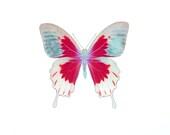 Butterfly Fine Art Print, Children Room Art, Girls Room Decor, Multicolor Art, Pink and Blue Butterfly - SevenTen