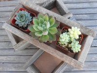 2 Rustic Wedding Boxes, Centerpiece, Decor, Succulent Planter, Barn Wedding, Reclaimed Wood