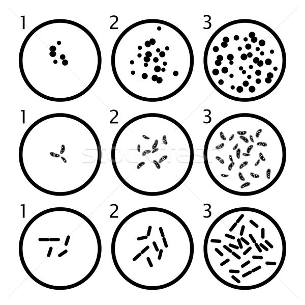 Bacteria Stock Vectors, Illustrations and Cliparts