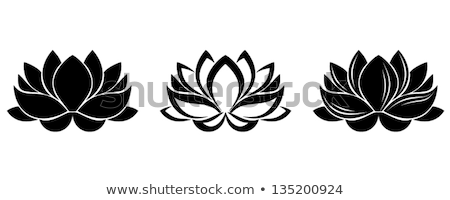 Stylized flower Stock Photos Stock Images and Vectors