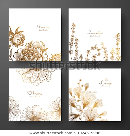 Wedding invitation lavender daisies stock photo