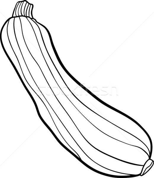 zucchini vegetable cartoon for coloring book vector