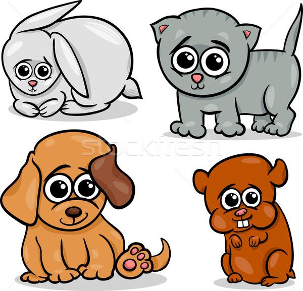 pets stock photos stock