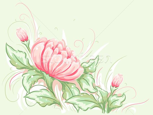Shabby Chic Flower Design vector illustration lenm