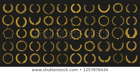Laurel wreath vector illustration © Mr_Vector (#528494