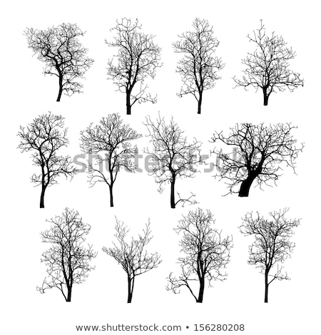 Black Tree And Roots Vector Illustration Stock Vector Art