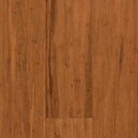 """Natural Bamboo Expressions 5-1/4"""" Solid Bamboo Flooring in ..."""