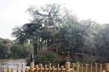 Tarzan' Treehouse - Disney Wiki