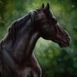 Wallpaper Horse Oil Art Watercolor Pencil Painting Horse Horse Gouache Wallpaper Painting Painting Forest Nature Black Horse Black Stallion Images For Desktop Section Zhivopis Download